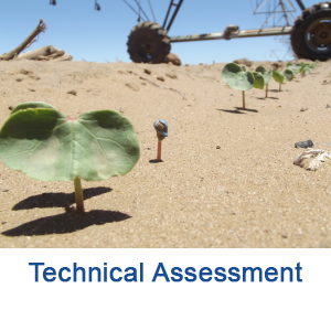 Technical Assessments